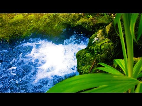 Stream Sounds White Noise | for Sleeping, Studying, Relaxation, Focus | 10 Hours