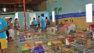 San Diego House Rabbit Society New Adoption Center
