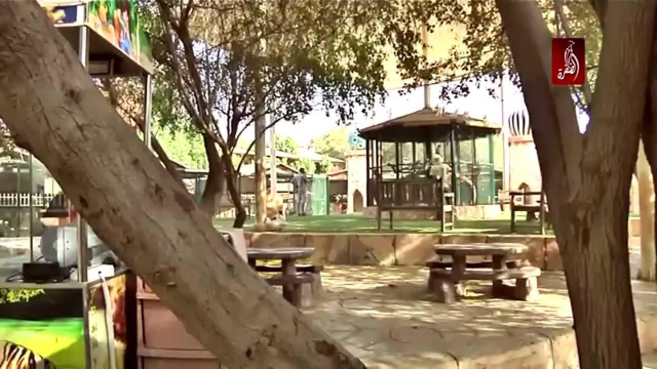 حديقة الحيوانات في أبوظبي سياحة داخلية Youtube