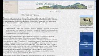 Как создать сайт на Яндекс Народ (урок 3)