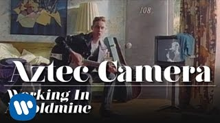 Watch Aztec Camera Working In A Goldmine video