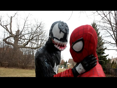 The Avenging SpiderMan   1