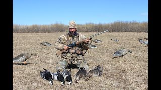 Охота на гуся с чучелами видео