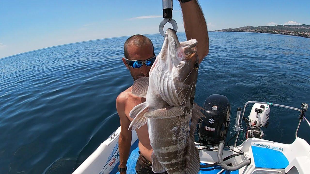 Cernia Bianca - Pesca a traina con il sugarello vivo