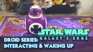 Galaxy Build-A-Edge Droid Serisi: Etkileşim ve Uyanma BB bir Droid