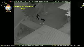 Operazione «Jungle»: 13 misure cautelari in Puglia, Basilicata ed Emilia