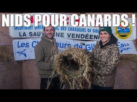Opération Balance ton Nid - Création de Nids pour Canards Sauvages !