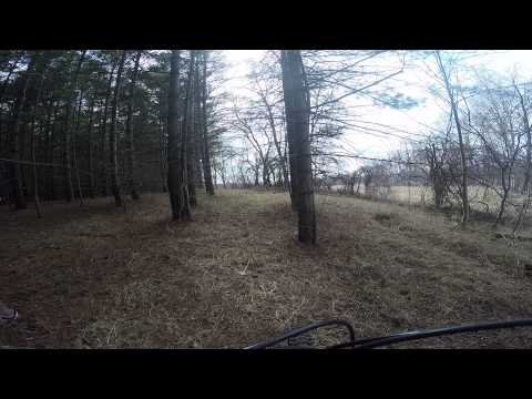 Trail at Preservation Park - Guelph