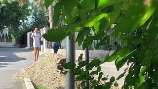 PAPARACO! Ljuba Pantović sa dečkom uhvaćena kod plastičara