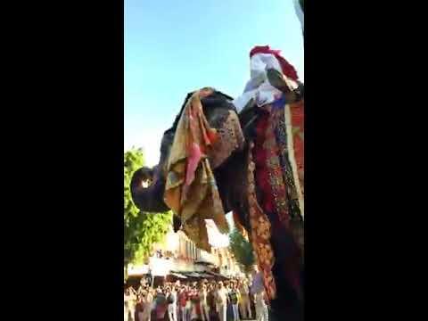 तीज त्यौहार राजस्थान(Teej Festival Rajasthan) 2017