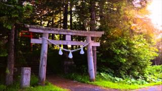 【作業用BGM】ひぐらしの鳴き声1時間/Nature sound healing music