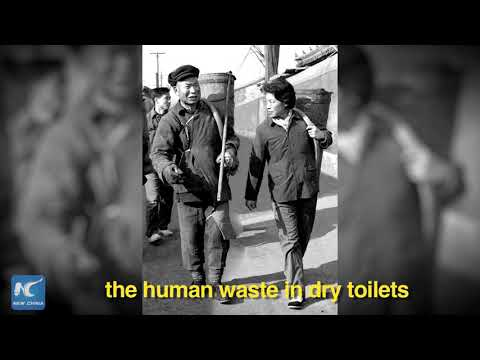 "China Album: How did China solve its ""toilet issue""?"