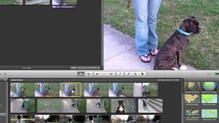 Cropping video in iM๐vie 11