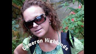 9 Malaysia Cameron Highlands Tea Plantations