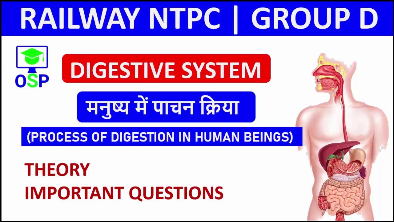 पाचन तंत्र, Digestive system (Part 2) | Science Crash Cource | RRB NTPC / RRC GROUP D 2019 |