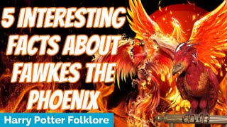 facts about the phoenix