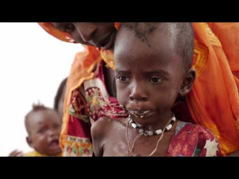 Food Security Situation in northeastern Nigeria, Somalia, South Sudan and Yemen