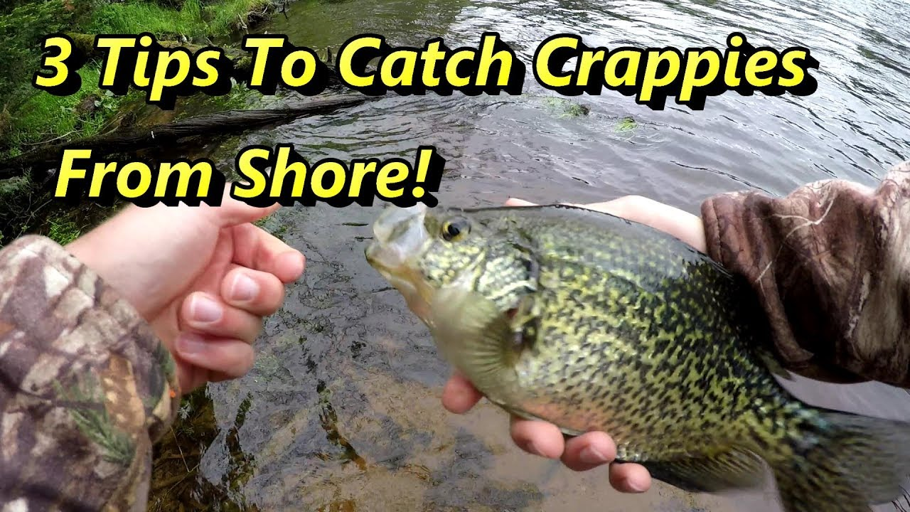 3 crappie fishing tips guaranteed to catch crappies fro