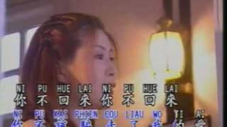 林淑娟 (Bessie Lin) - 我把爱情收回来