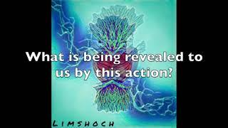 Thought Provoking ?'s - Torah Portion Shemini  10:3-20