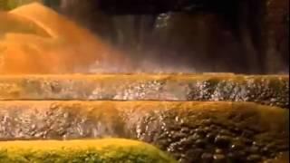 Gold - Documentary