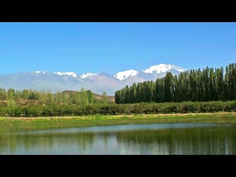 MENDOZA - Argentina, turismo bodegas y viñedos. Ruta del vino en Mendoza enoturismo visitar caminos Videos De Viajes