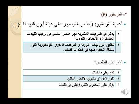 كتاب الفاحشة الوجه الآخر عائشة للشيخ ياسر الحبيب pdf