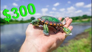 $300 TURTLE LURE May be The Craziest Lure Ever Made! (Here