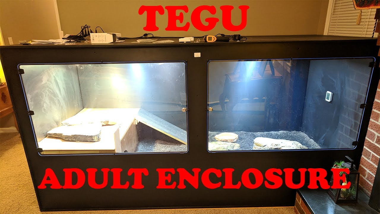 Animal Plastics T100 Tegu Enclosure Review One Year Later Youtube A plastic bag ballooned with water can look a lot like squid, or other prey, to the seals and marine mammals that hunt them. animal plastics t100 tegu enclosure