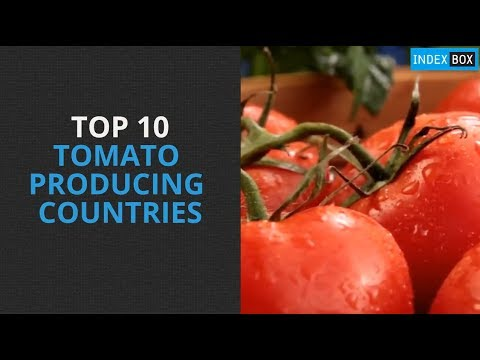 Top 10 Tomato Producing Countries