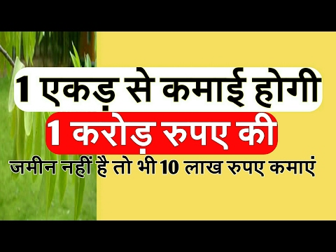term plan 1 crore rupees earning in small investment by sandal farming