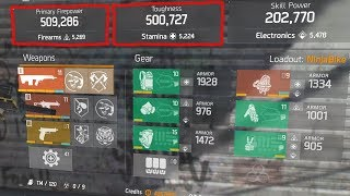 YOU SHOULD REALLY TRY THIS PERFECT BUILD... (THE DIVISION)