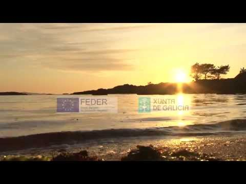 Vive las Rías Baixas con Tee Travel