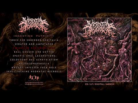 VISCERAL DISGORGE - Strangled And Sodomized (Official Track Stream)