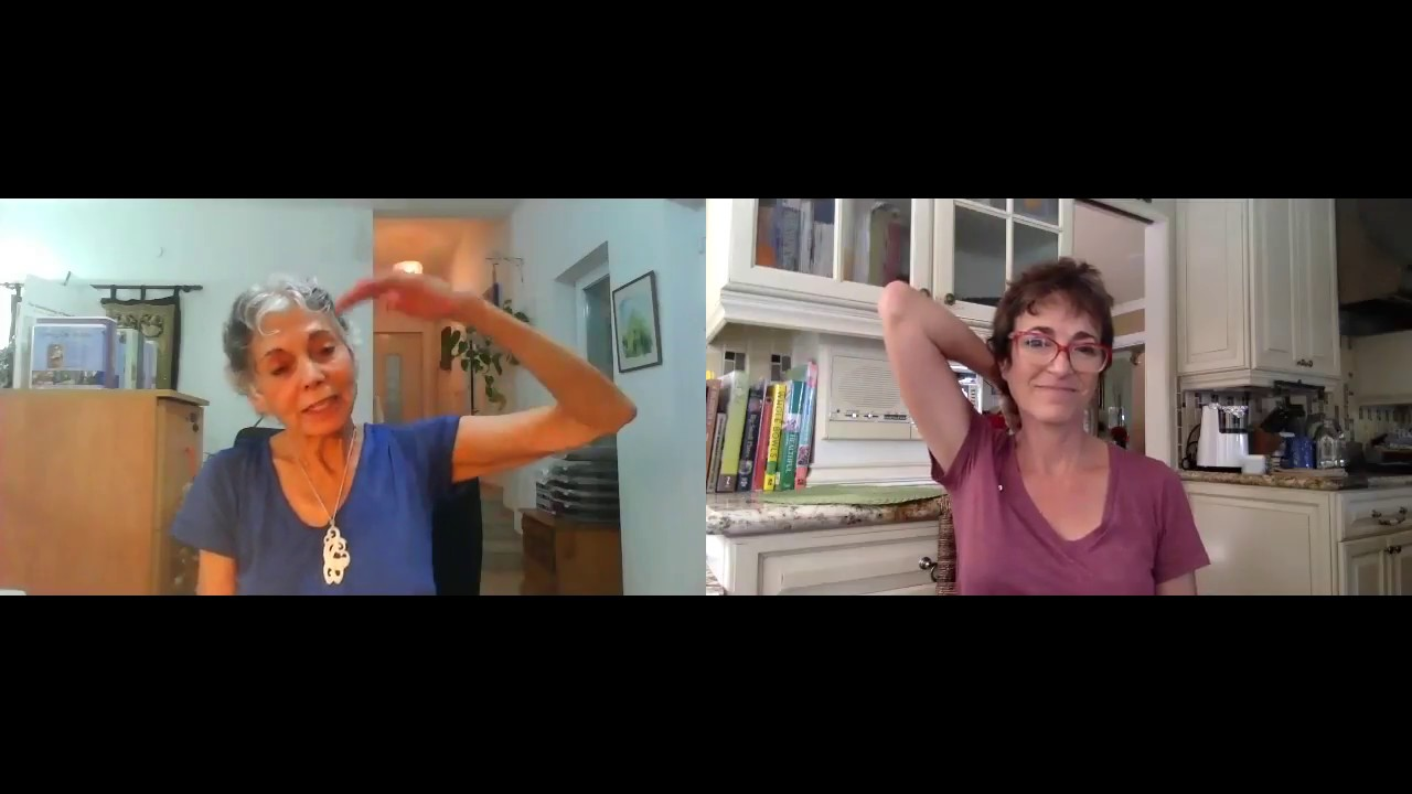 Movement Solutions For The Spine With Ruthy Alon Youtube
