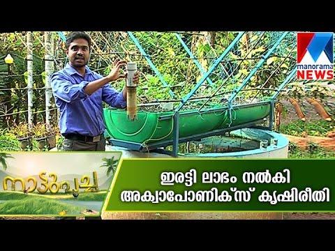 Aquaponics providing double guarantee for a farmer | Manorama News  | Nattupacha