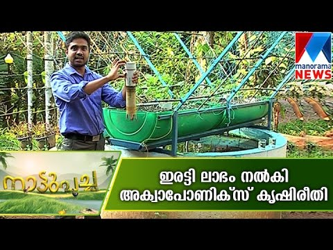 Aquaponics providing double guarantee for a farmer | Manorama News  | Nattupacha
