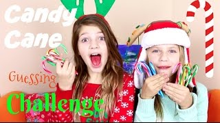 Christmas Candy Cane Tasting Challenge | Guess That Flavor Annie and Hope