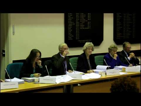 171023 Scrutiny Committee - Summing up and vote
