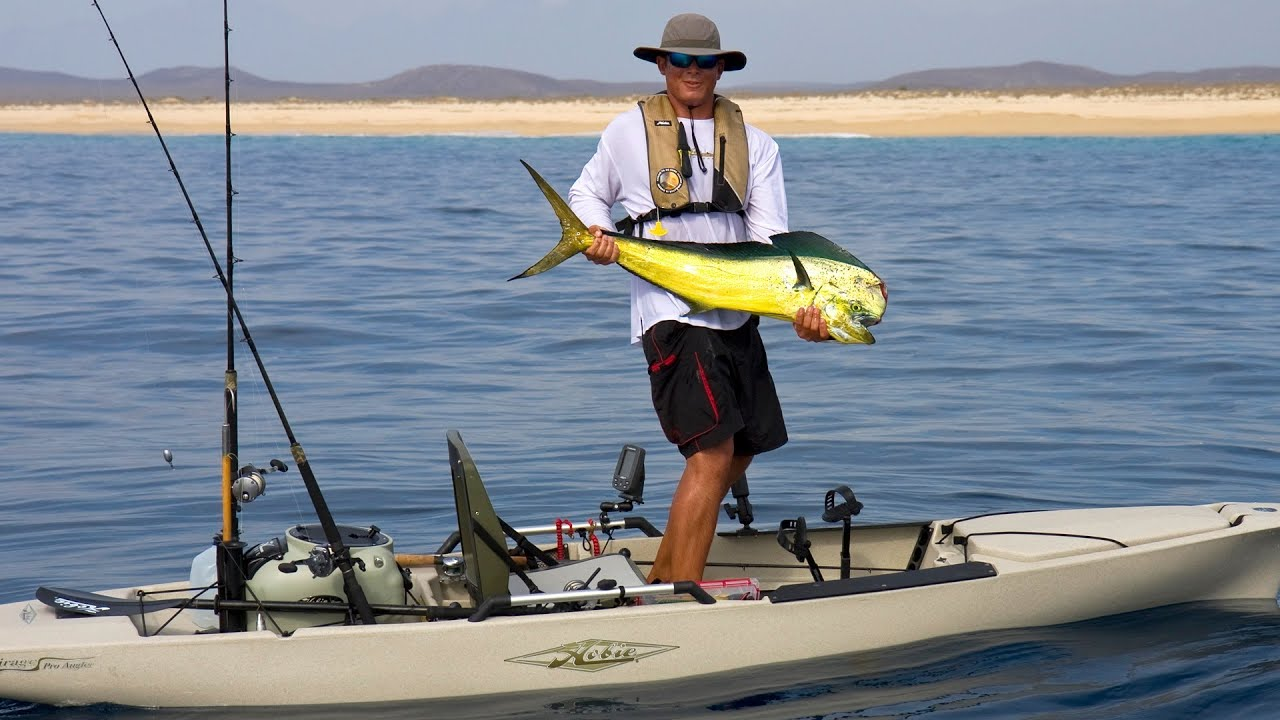 Vince Console catches a large bull Dorado from his Hobie ...