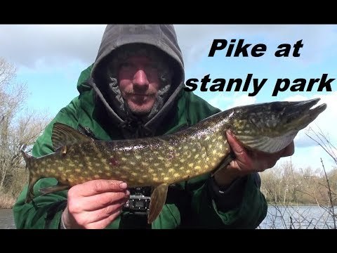 Fishing Blackpool Stanley Park For Pike, Part One