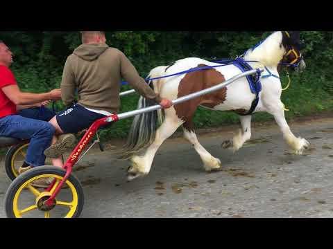 Appleby Horse Fair Friday 2018