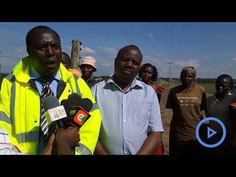 Grazing livestock blamed for increasing road accidents at Salgaa area