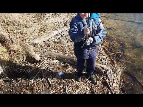 Trout Fishing Illinois 2018!!!!