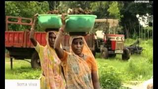 euronews Terra viva - Muni Seva: a Green-Tech Indian Ashram thumbnail
