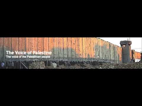 VOP 2014-05-31: Palestinian Artist Rehab Nazzal