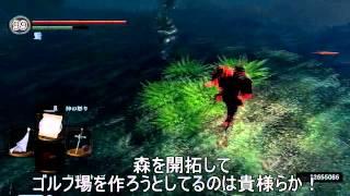 【ダークソウル】兄弟戦隊!ピクレンジャー【侵入】 thumbnail