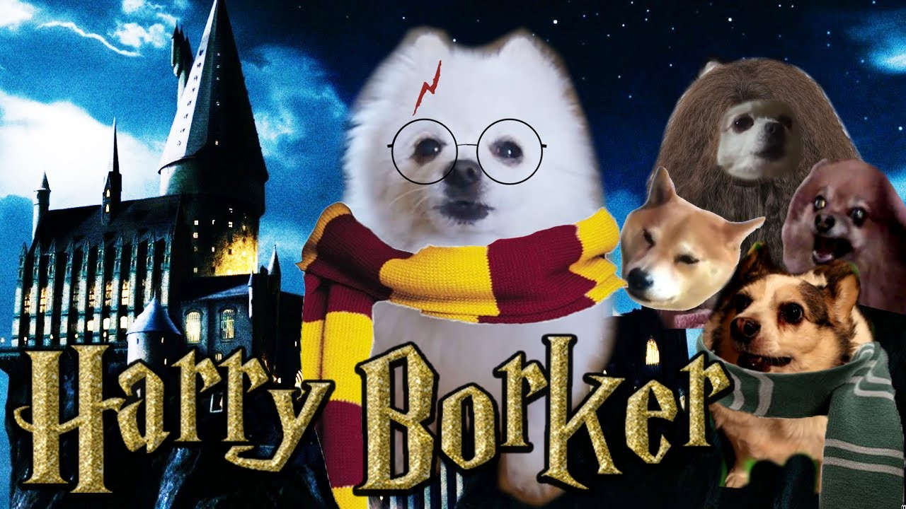 해리포터 강아지 리믹스 Harry Potter BGM gabe the dog cover