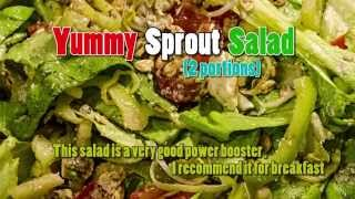 Sprout Salad (with Almonds & Oatmeal)