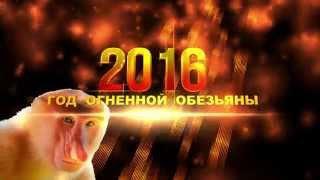 ФУТАЖИ 2016=Год Огненной Обезьяны 4К разрешение 4K UHD Ultra HD Free Footage